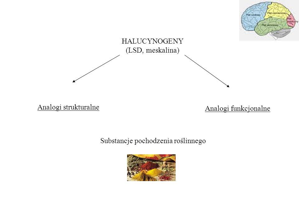 HALUCYNOGENY (LSD, meskalina) Analogi strukturalne Analogi funkcjonalne Substancje pochodzenia roślinnego