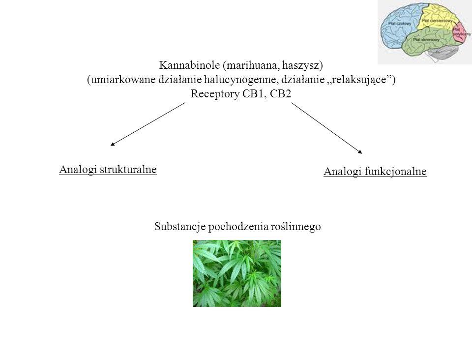 """Kannabinole (marihuana, haszysz) (umiarkowane działanie halucynogenne, działanie """"relaksujące ) Receptory CB1, CB2 Analogi strukturalne Analogi funkcjonalne Substancje pochodzenia roślinnego"""