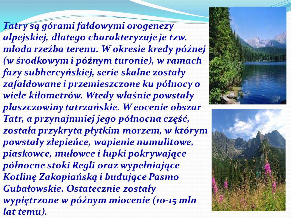 Tatry są górami fałdowymi orogenezy alpejskiej, dlatego charakteryzuje je tzw. młoda rzeźba terenu. W okresie kredy późnej (w środkowym i późnym turon