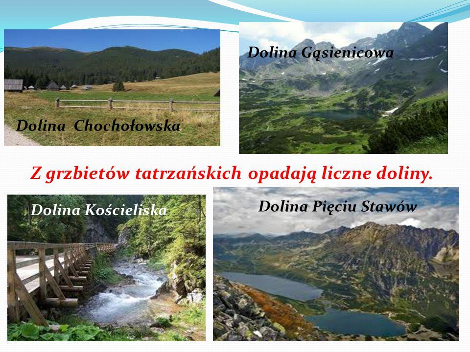 Z grzbietów tatrzańskich opadają liczne doliny. Dolina Chochołowska Dolina Gąsienicowa Dolina Kościeliska Dolina Pięciu Stawów