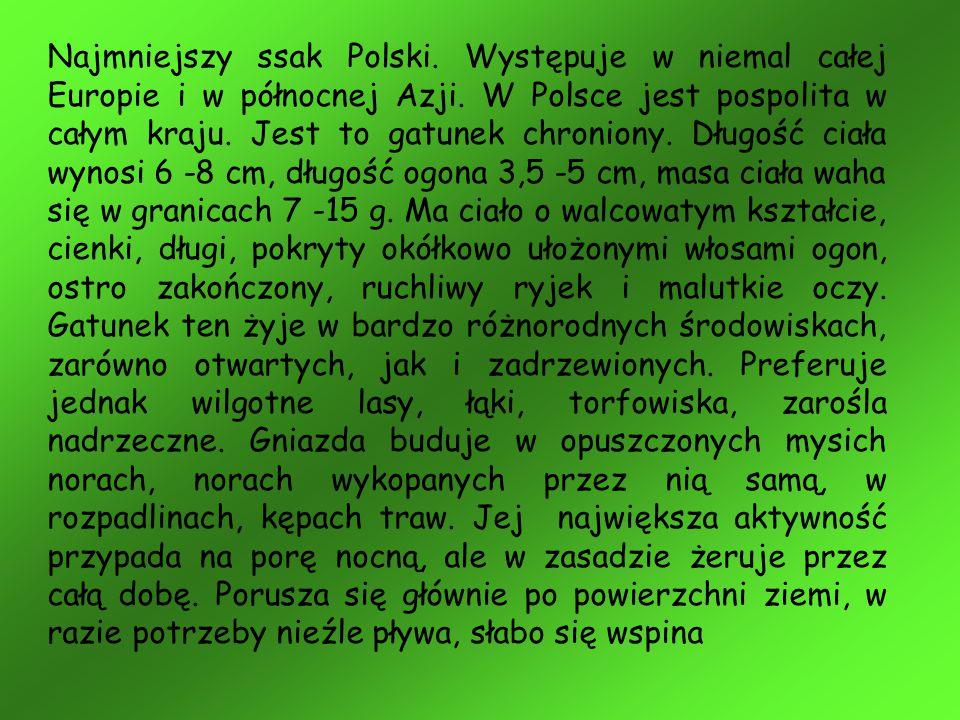 Najmniejszy ssak Polski. Występuje w niemal całej Europie i w północnej Azji. W Polsce jest pospolita w całym kraju. Jest to gatunek chroniony. Długoś