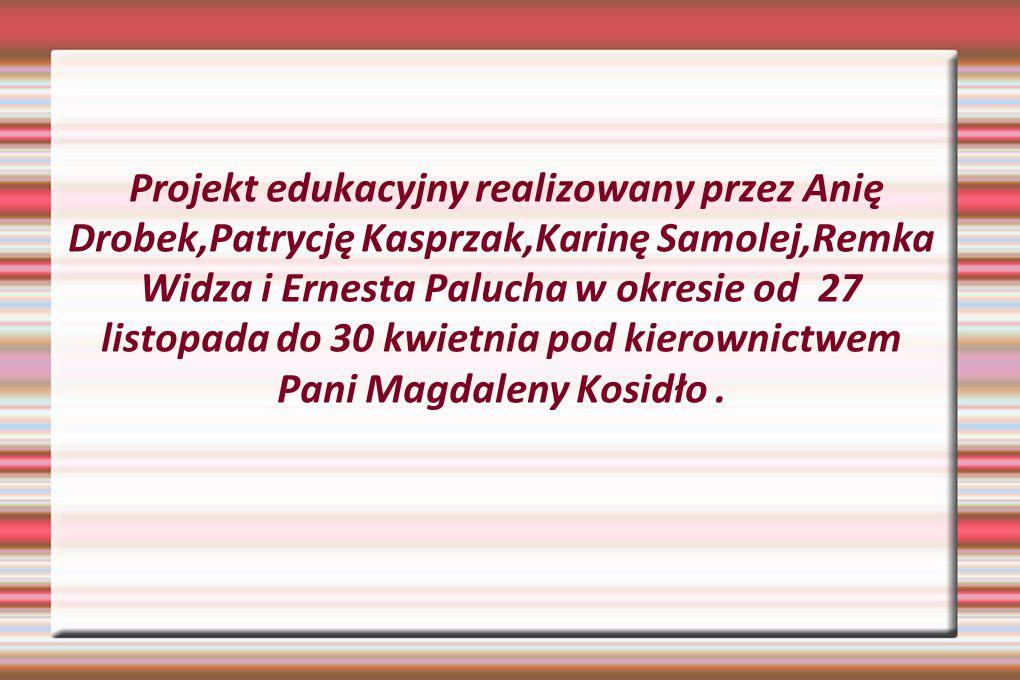 Projekt edukacyjny realizowany przez Anię Drobek,Patrycję Kasprzak,Karinę Samolej,Remka Widza i Ernesta Palucha w okresie od 27 listopada do 30 kwietn