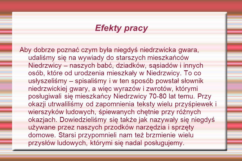 Słownik niedrzwickiej gwary ludowej