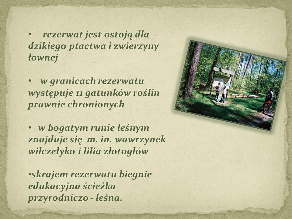 rezerwat jest ostoją dla dzikiego ptactwa i zwierzyny łownej w granicach rezerwatu występuje 11 gatunków roślin prawnie chronionych w bogatym runie le