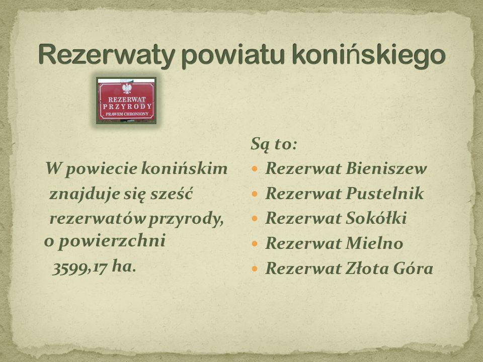 W powiecie konińskim znajduje się sześć rezerwatów przyrody, o powierzchni 3599,17 ha. Są to: Rezerwat Bieniszew Rezerwat Pustelnik Rezerwat Sokółki R