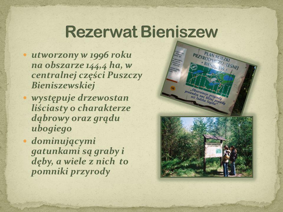 utworzony w 1996 roku na obszarze 144,4 ha, w centralnej części Puszczy Bieniszewskiej występuje drzewostan liściasty o charakterze dąbrowy oraz grądu