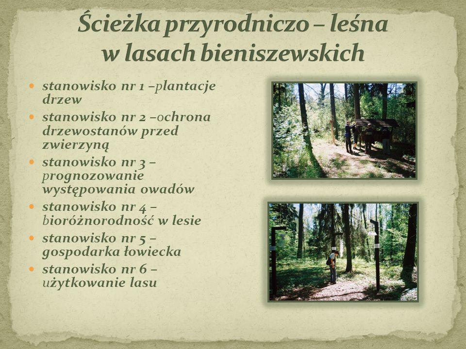stanowisko nr 1 –plantacje drzew stanowisko nr 2 –ochrona drzewostanów przed zwierzyną stanowisko nr 3 – prognozowanie występowania owadów stanowisko