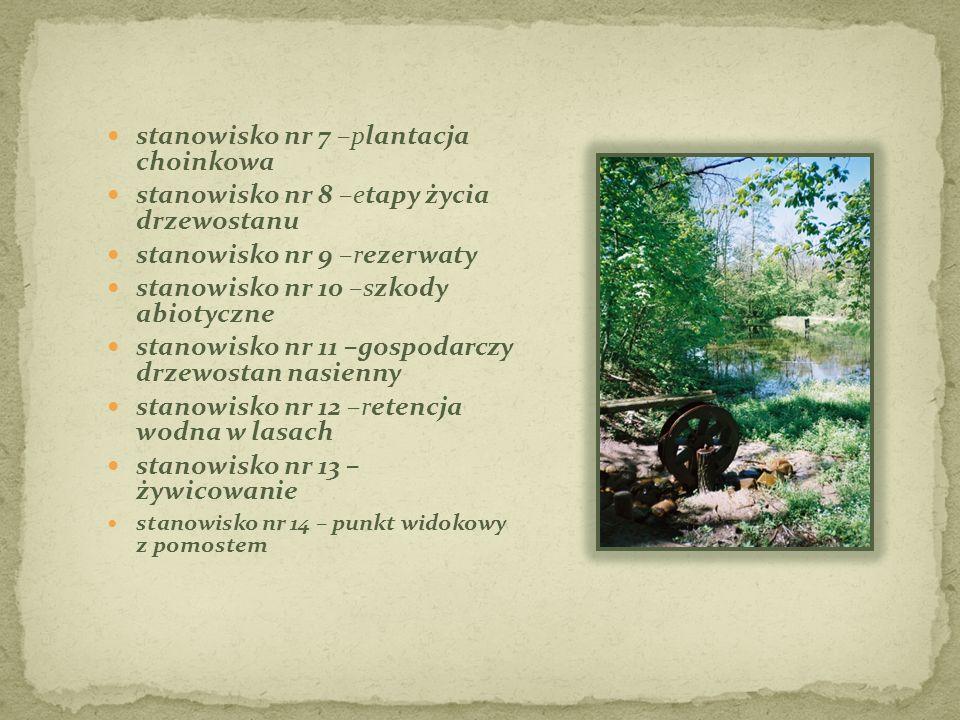 stanowisko nr 7 –plantacja choinkowa stanowisko nr 8 –etapy życia drzewostanu stanowisko nr 9 –rezerwaty stanowisko nr 10 –szkody abiotyczne stanowisk