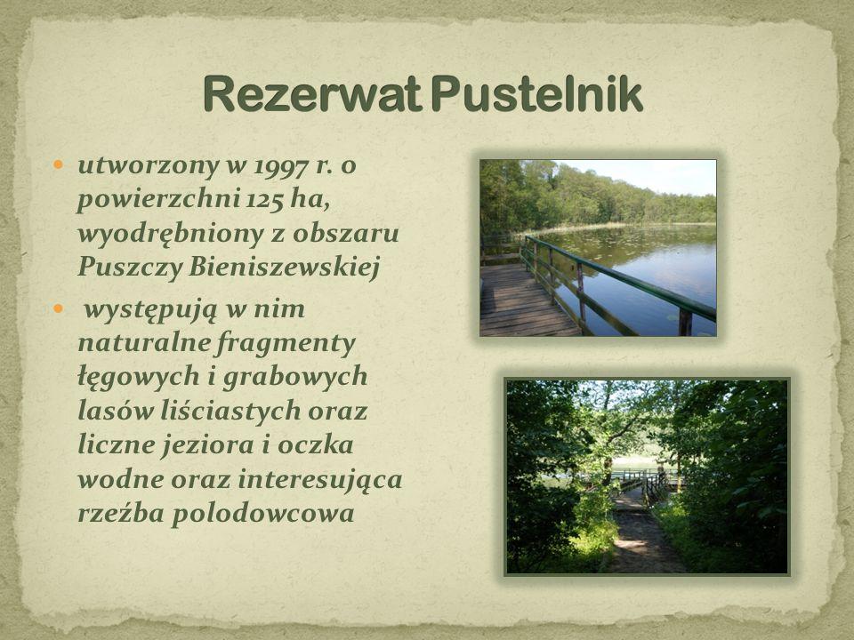 utworzony w 1997 r. o powierzchni 125 ha, wyodrębniony z obszaru Puszczy Bieniszewskiej występują w nim naturalne fragmenty łęgowych i grabowych lasów