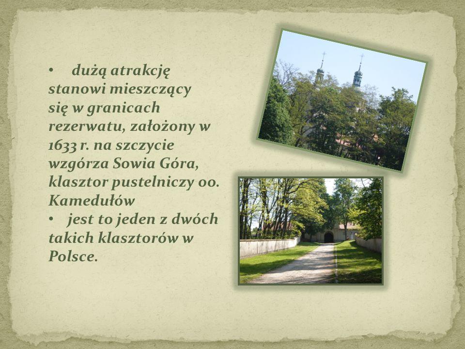 dużą atrakcję stanowi mieszczący się w granicach rezerwatu, założony w 1633 r. na szczycie wzgórza Sowia Góra, klasztor pustelniczy oo. Kamedułów jest
