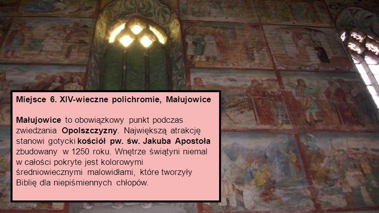 Miejsce 1.Dolinki Krakowskie Najwięcej głosów zebrały Dolinki Krakowskie.