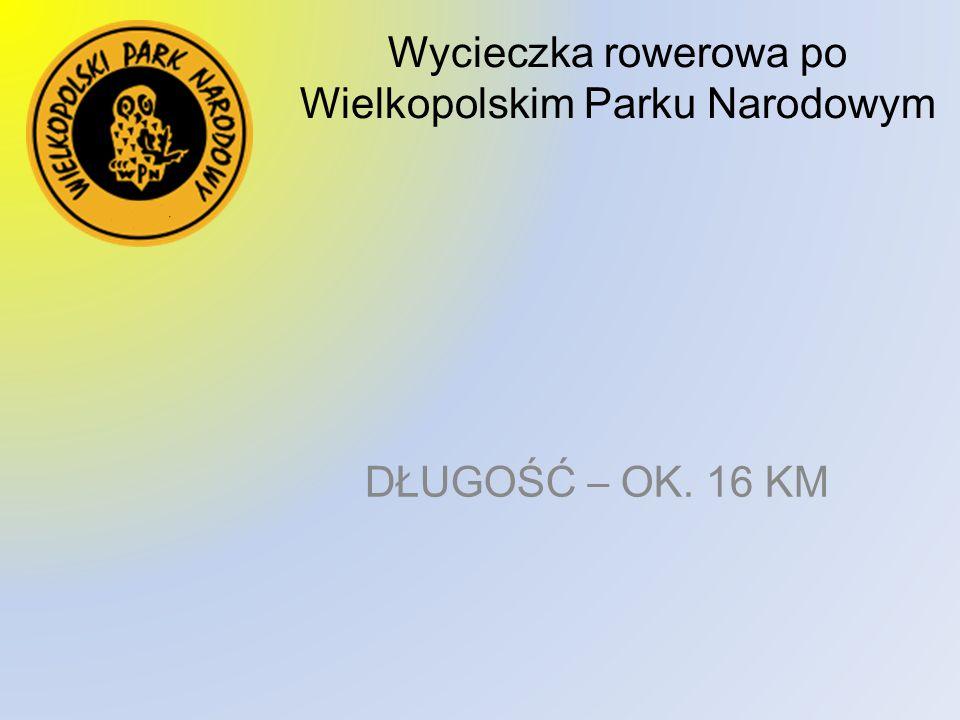 Wycieczka rowerowa po Wielkopolskim Parku Narodowym DŁUGOŚĆ – OK. 16 KM