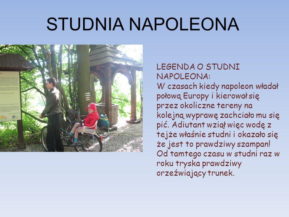 STUDNIA NAPOLEONA LEGENDA O STUDNI NAPOLEONA: W czasach kiedy napoleon władał połową Europy i kierował się przez okoliczne tereny na kolejną wyprawę zachciało mu się pić.