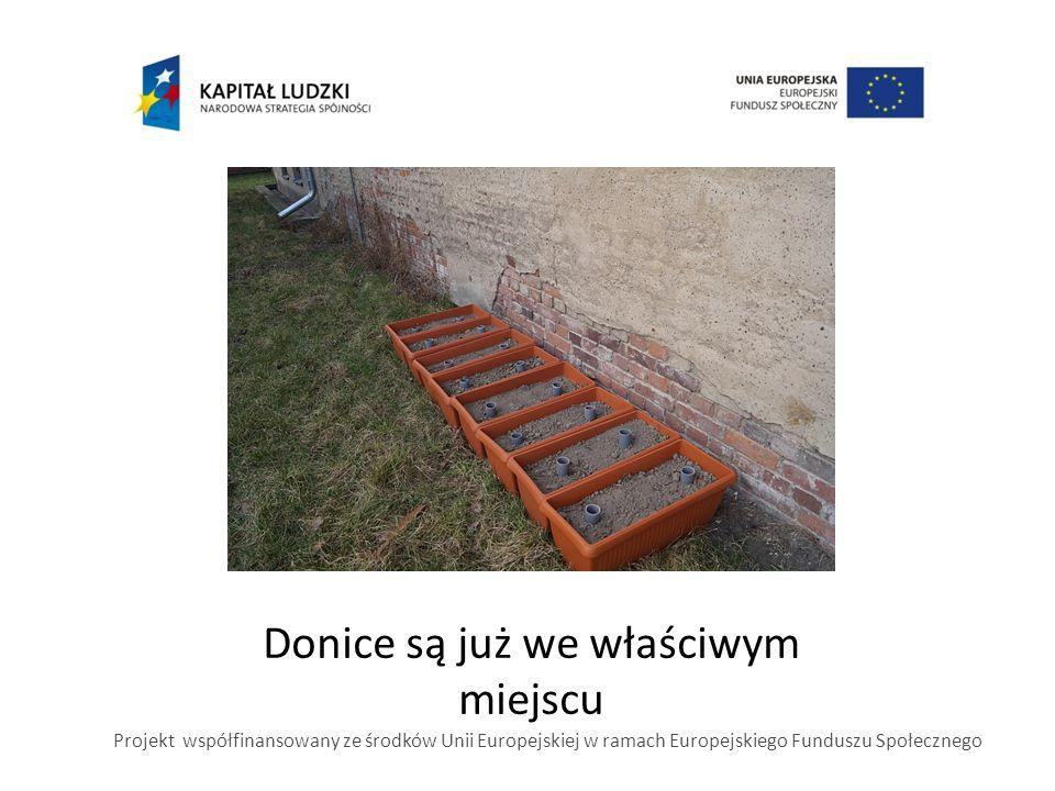 Donice są już we właściwym miejscu Projekt współfinansowany ze środków Unii Europejskiej w ramach Europejskiego Funduszu Społecznego