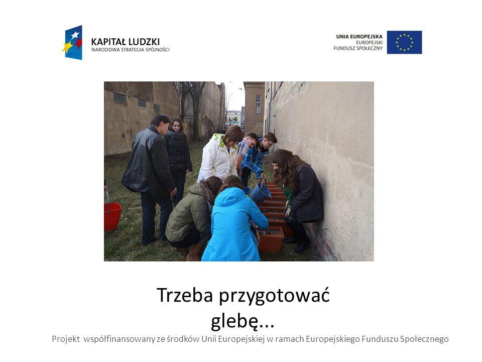 Trzeba przygotować glebę... Projekt współfinansowany ze środków Unii Europejskiej w ramach Europejskiego Funduszu Społecznego
