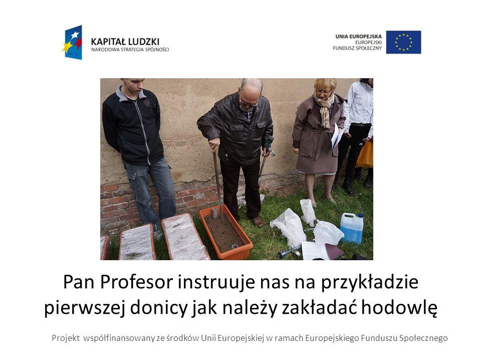Pan Profesor instruuje nas na przykładzie pierwszej donicy jak należy zakładać hodowlę Projekt współfinansowany ze środków Unii Europejskiej w ramach Europejskiego Funduszu Społecznego