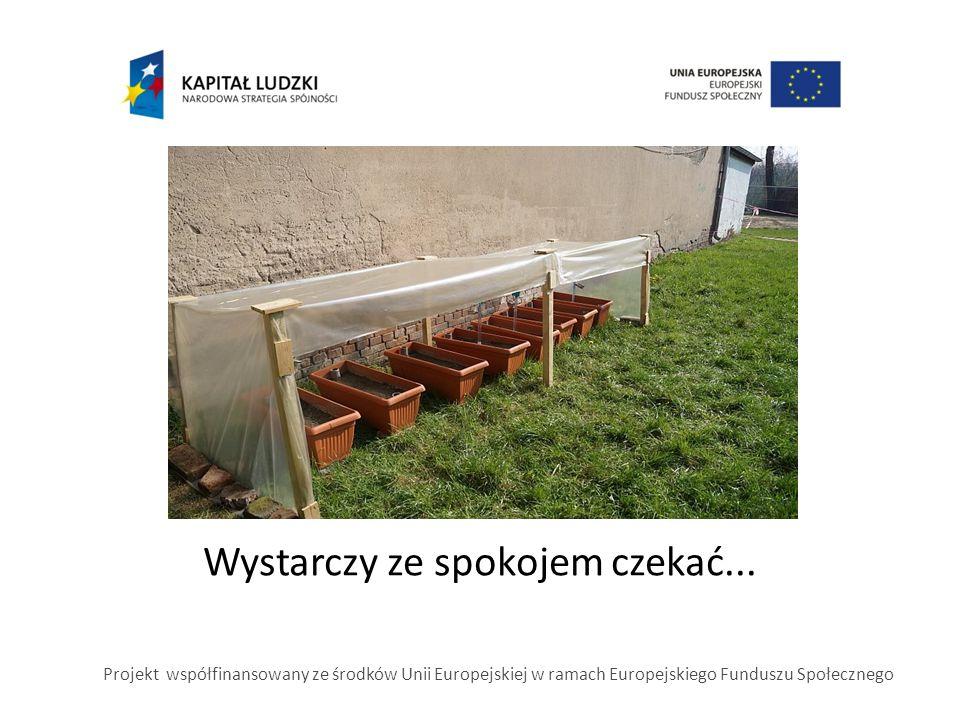Wystarczy ze spokojem czekać... Projekt współfinansowany ze środków Unii Europejskiej w ramach Europejskiego Funduszu Społecznego