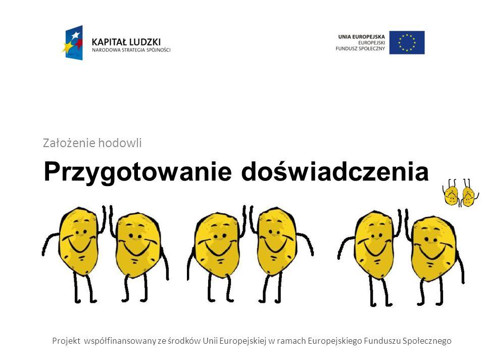 Przygotowanie doświadczenia Założenie hodowli Projekt współfinansowany ze środków Unii Europejskiej w ramach Europejskiego Funduszu Społecznego