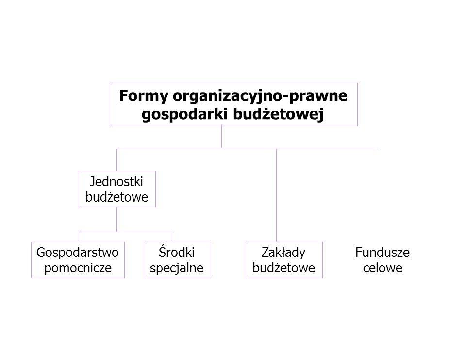 Fundusze celowe Zakłady budżetowe Formy organizacyjno-prawne gospodarki budżetowej Gospodarstwo pomocnicze Środki specjalne Jednostki budżetowe