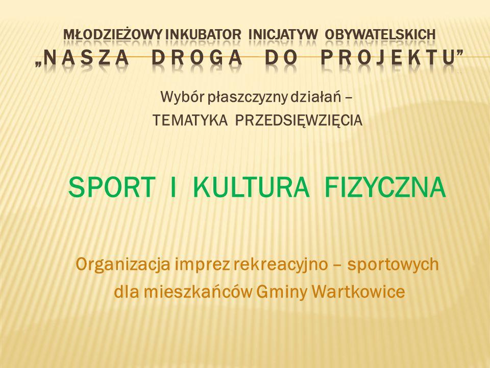 Wybór płaszczyzny działań – TEMATYKA PRZEDSIĘWZIĘCIA SPORT I KULTURA FIZYCZNA Organizacja imprez rekreacyjno – sportowych dla mieszkańców Gminy Wartkowice
