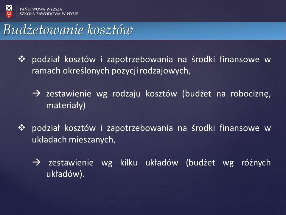  podział kosztów i zapotrzebowania na środki finansowe w ramach określonych pozycji rodzajowych,  zestawienie wg rodzaju kosztów (budżet na robocizn