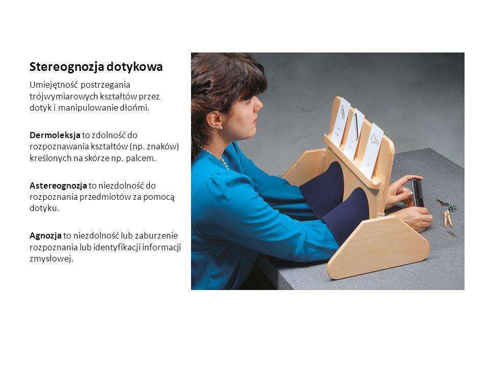 Stereognozja dotykowa Umiejętność postrzegania trójwymiarowych kształtów przez dotyk i manipulowanie dłońmi. Dermoleksja to zdolność do rozpoznawania