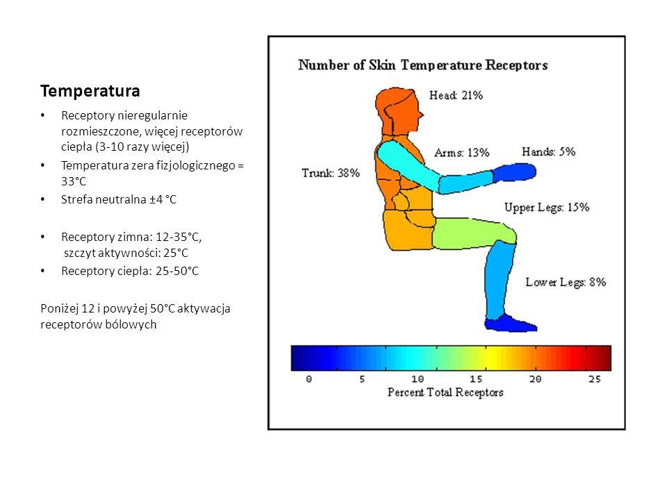 Temperatura Receptory nieregularnie rozmieszczone, więcej receptorów ciepła (3-10 razy więcej) Temperatura zera fizjologicznego = 33°C Strefa neutraln