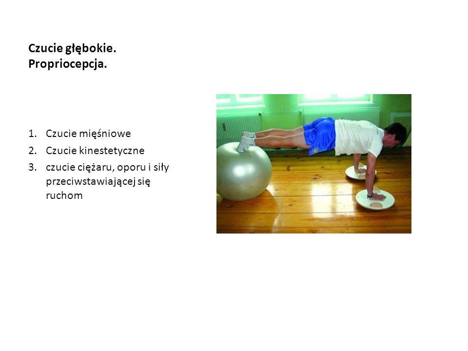 Czucie głębokie. Propriocepcja. 1.Czucie mięśniowe 2.Czucie kinestetyczne 3.czucie ciężaru, oporu i siły przeciwstawiającej się ruchom