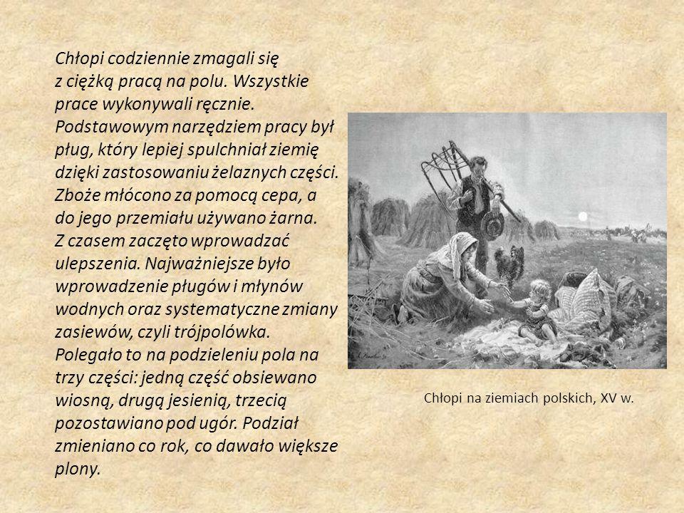 Chłopi na ziemiach polskich, XV w. Chłopi codziennie zmagali się z ciężką pracą na polu. Wszystkie prace wykonywali ręcznie. Podstawowym narzędziem pr
