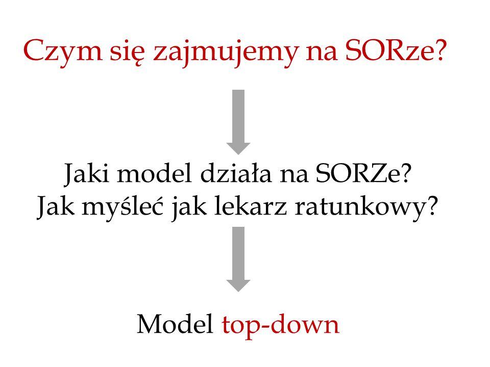 Czym się zajmujemy na SORze. Jaki model działa na SORZe.