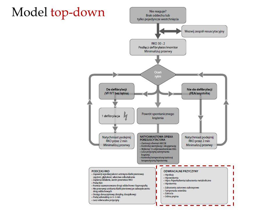 Model top-down