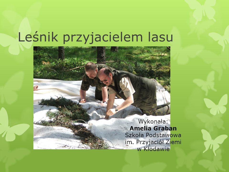 Leśnik przyjacielem lasu Wykonała: Amelia Graban Szkoła Podstawowa im. Przyjaciół Ziemi w Kłodawie