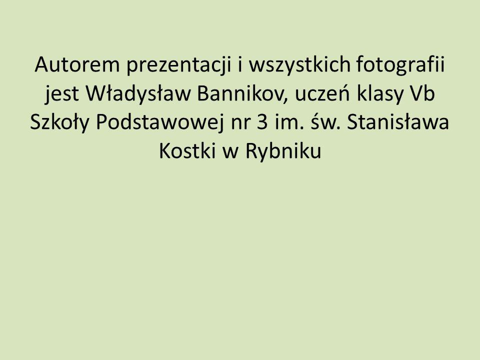 Autorem prezentacji i wszystkich fotografii jest Władysław Bannikov, uczeń klasy Vb Szkoły Podstawowej nr 3 im. św. Stanisława Kostki w Rybniku