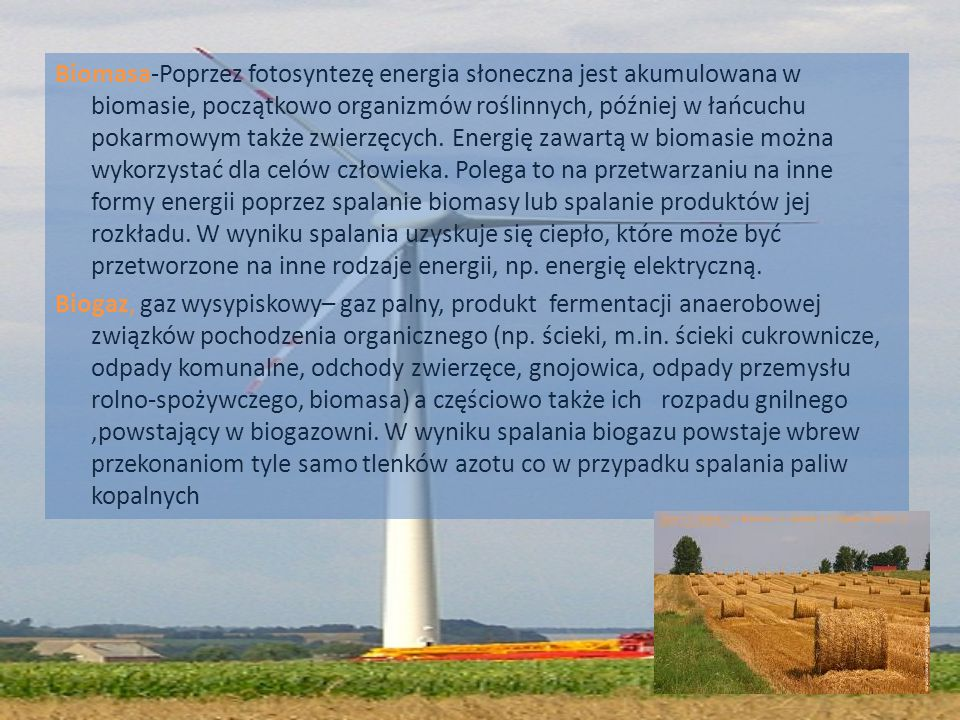 Biomasa-Poprzez fotosyntezę energia słoneczna jest akumulowana w biomasie, początkowo organizmów roślinnych, później w łańcuchu pokarmowym także zwier