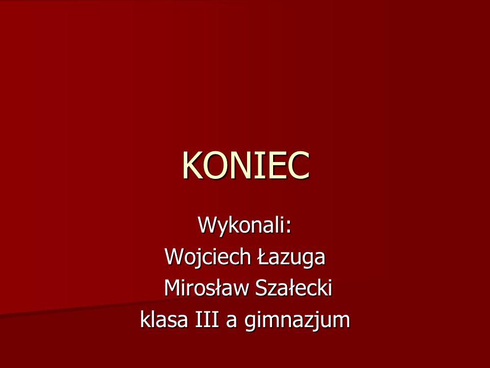 Wykonali: Wojciech Łazuga Mirosław Szałecki Mirosław Szałecki klasa III a gimnazjum KONIEC