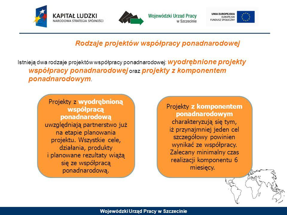 Wojewódzki Urząd Pracy w Szczecinie Projekty z komponentem ponadnarodowym charakteryzują się tym, iż przynajmniej jeden cel szczegółowy powinien wynikać ze współpracy.