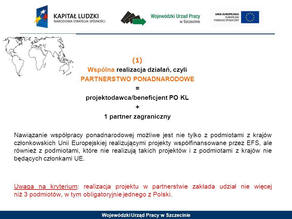 Wojewódzki Urząd Pracy w Szczecinie (1) Wspólna realizacja działań, czyli PARTNERSTWO PONADNARODOWE = projektodawca/beneficjent PO KL + 1 partner zagraniczny Nawiązanie współpracy ponadnarodowej możliwe jest nie tylko z podmiotami z krajów członkowskich Unii Europejskiej realizującymi projekty współfinansowane przez EFS, ale również z podmiotami, które nie realizują takich projektów i z podmiotami z krajów nie będących członkami UE.
