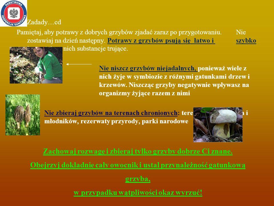 Zadady…cd Pamiętaj, aby potrawy z dobrych grzybów zjadać zaraz po przygotowaniu.
