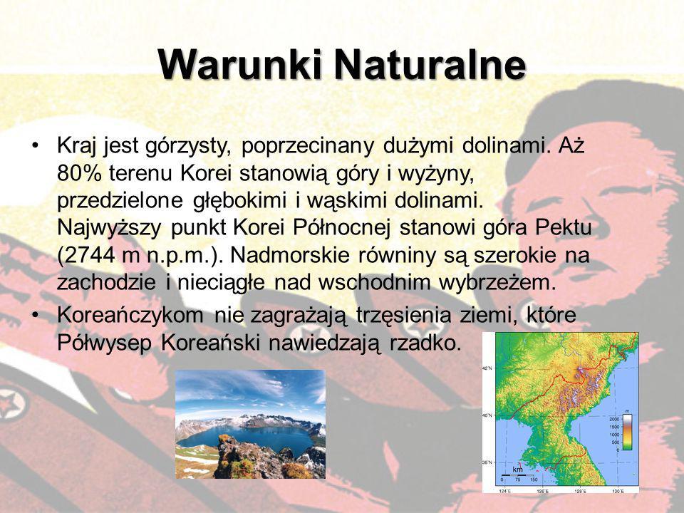 Warunki Naturalne Kraj jest górzysty, poprzecinany dużymi dolinami. Aż 80% terenu Korei stanowią góry i wyżyny, przedzielone głębokimi i wąskimi dolin