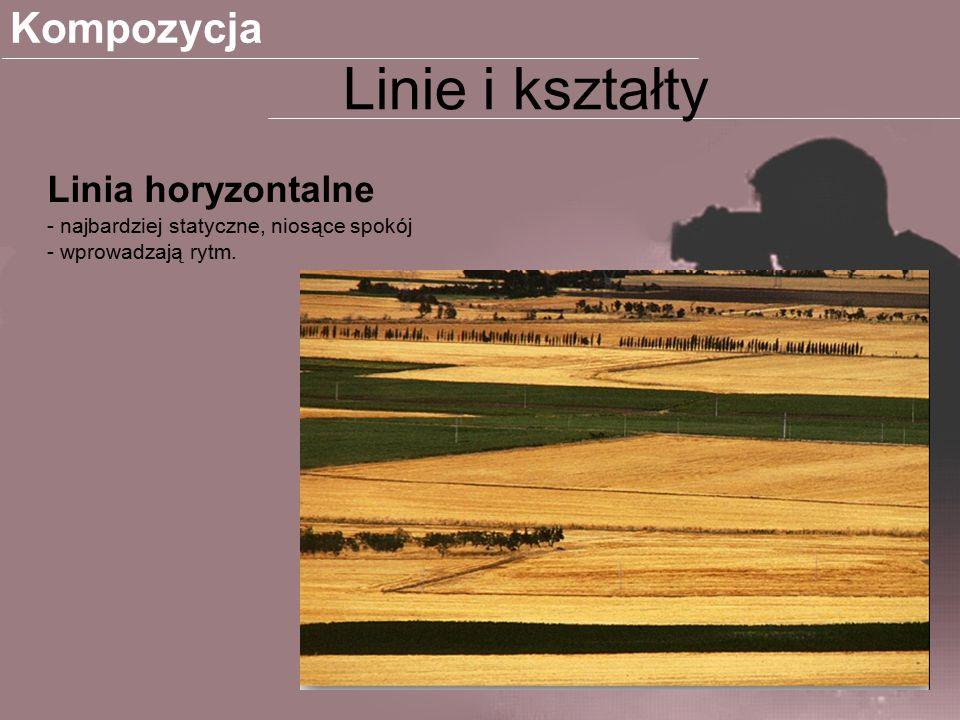 Linie wertykalne Bardziej dynamiczne linie od horyzontalnych Kompozycja Linie i kształty