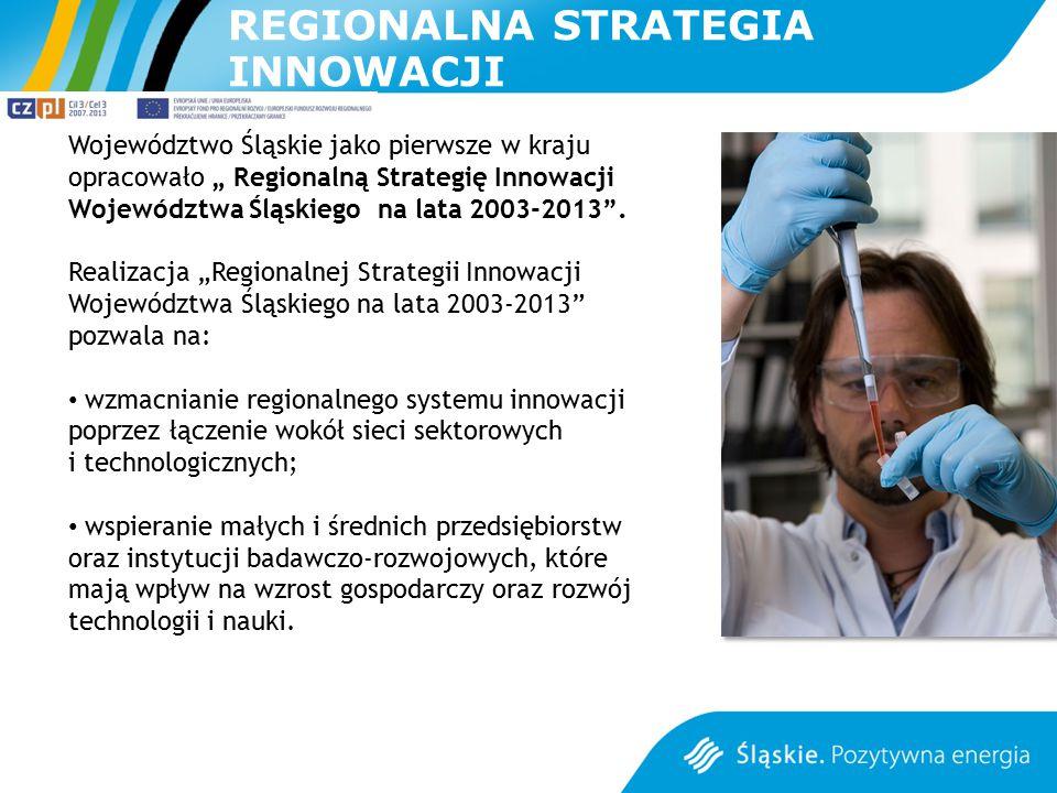"""Województwo Śląskie jako pierwsze w kraju opracowało """" Regionalną Strategię Innowacji Województwa Śląskiego na lata 2003-2013"""". Realizacja """"Regionalne"""