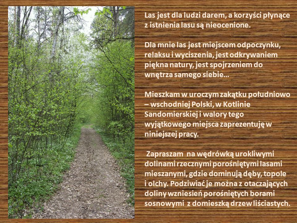 Las jest dla ludzi darem, a korzyści płynące z istnienia lasu są nieocenione. Dla mnie las jest miejscem odpoczynku, relaksu i wyciszenia, jest odkryw