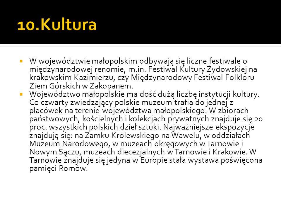  W województwie małopolskim odbywają się liczne festiwale o międzynarodowej renomie, m.in. Festiwal Kultury Żydowskiej na krakowskim Kazimierzu, czy