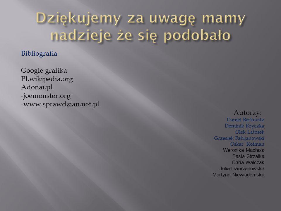 Bibliografia Google grafika Pl.wikipedia.org Adonai.pl -joemonster.org -www.sprawdzian.net.pl Autorzy: Daniel Berkovitz Dominik Kryczka Olek Latosek G