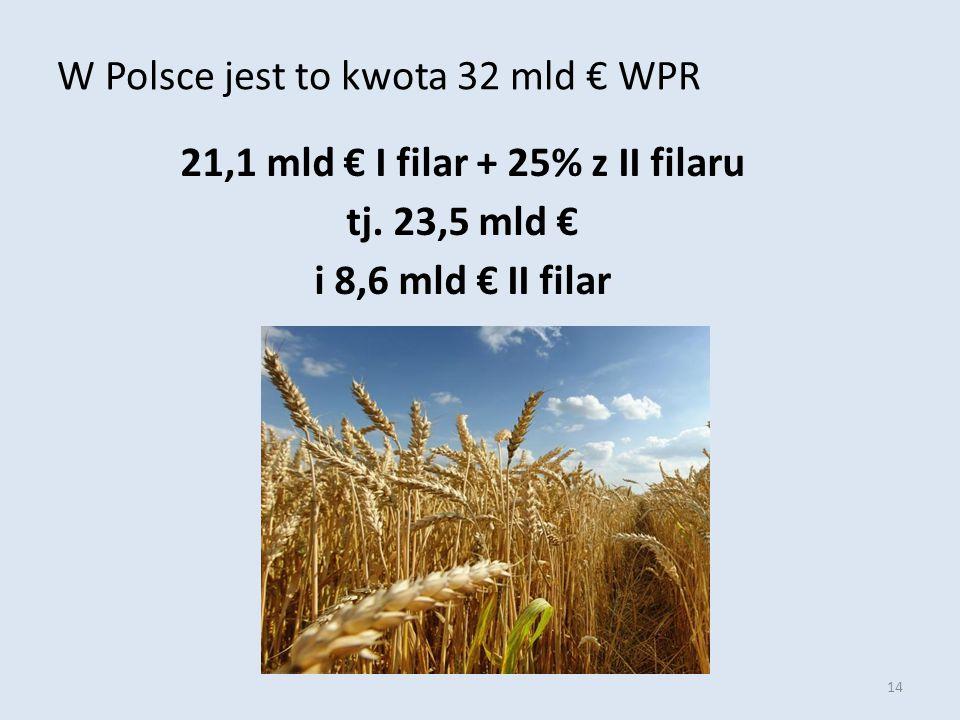 14 W Polsce jest to kwota 32 mld € WPR 21,1 mld € I filar + 25% z II filaru tj.