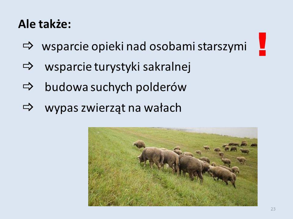23  wsparcie opieki nad osobami starszymi  wsparcie turystyki sakralnej  budowa suchych polderów  wypas zwierząt na wałach Ale także: !