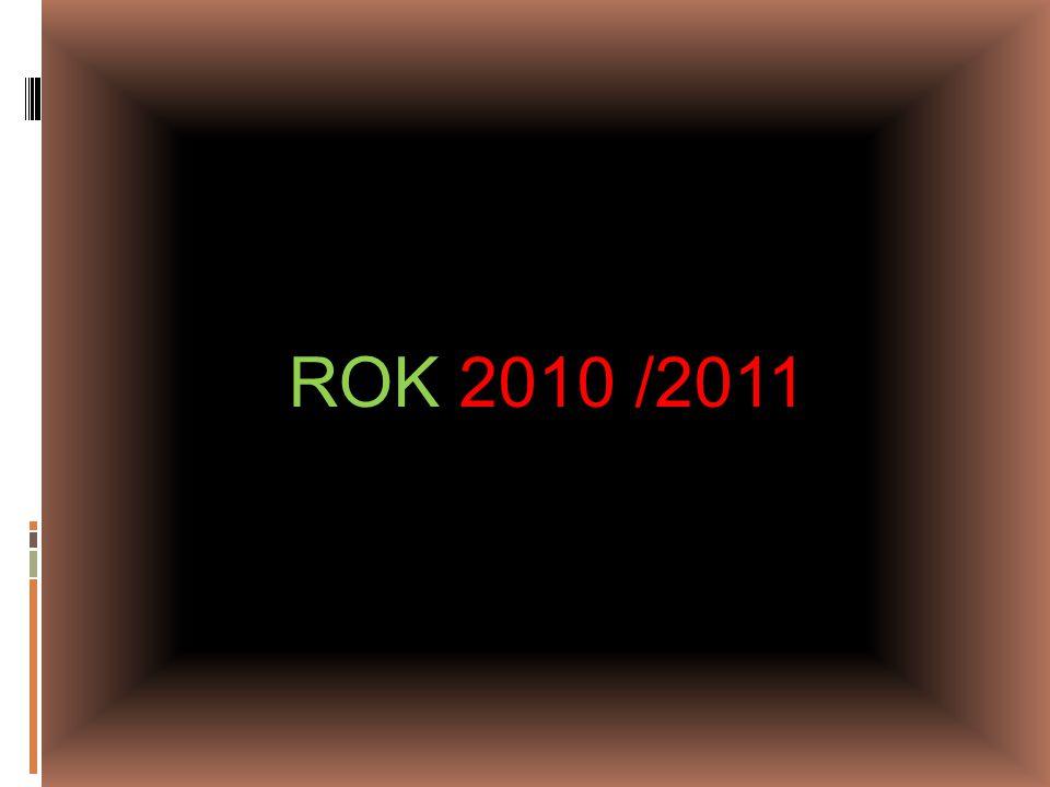 ROK 2010 /2011