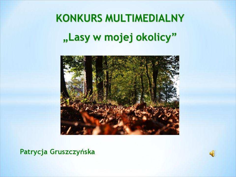 """Patrycja Gruszczyńska KONKURS MULTIMEDIALNY """"Lasy w mojej okolicy"""""""