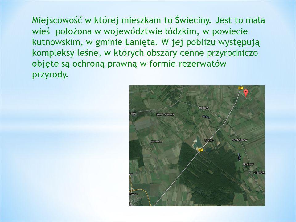 Miejscowość w której mieszkam to Świeciny. Jest to mała wieś położona w województwie łódzkim, w powiecie kutnowskim, w gminie Łanięta. W jej pobliżu w