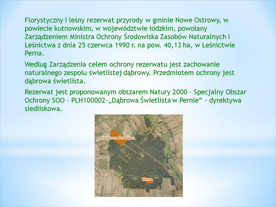 Florystyczny i leśny rezerwat przyrody w gminie Nowe Ostrowy, w powiecie kutnowskim, w województwie łódzkim, powołany Zarządzeniem Ministra Ochrony Śr